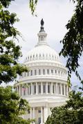 Stock Photo of United States Capitol Building, Washington DC, USA