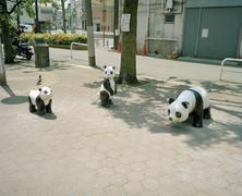 Panda sculptures in a public square Stock Photos