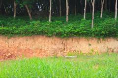 gravel deposits cut away - stock photo