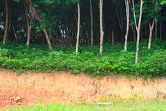 Gravel deposits cut away Stock Photos
