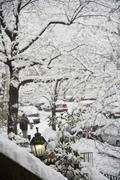 View of a snowy street from a front stoop, Brooklyn, New York, USA Stock Photos