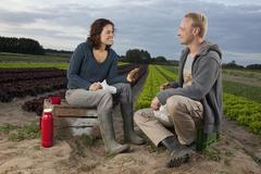 A man and a woman having lunch together by a lettuce field Stock Photos