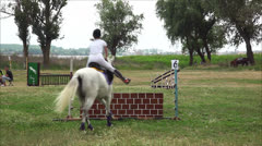 Preparation for the horse competitions Stock Footage
