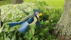 blue jay whirligig - stock footage