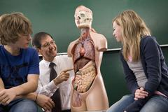 A biology teacher teaching students anatomy - stock photo