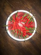 A bowl of red chili peppers Stock Photos