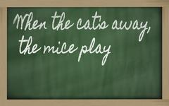 expression -  when the cat's away, the mice play - written on a school blackb - stock illustration