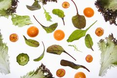 Various fruits and vegetables arranged on a lightbox Stock Photos