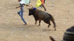 Bullfight 1 Colombia Stock Footage
