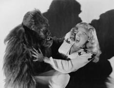 Terrified woman being attacked by gorilla Stock Photos