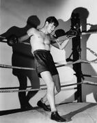 Boxer renkaaseen Kuvituskuvat