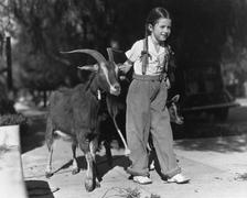 Girl leading two goats Stock Photos