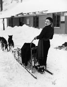 Woman on dogsled Stock Photos