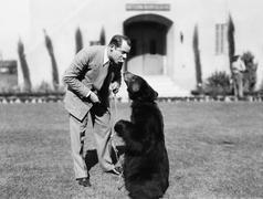 Man feeding a bear standing on his lawn Stock Photos