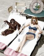 Chimpanzee and a woman sunbathing - stock photo