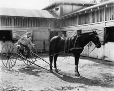 Horse racer sitting on the wagon Stock Photos