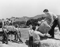 Men working on a farm loading hay - stock photo