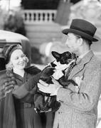 Man and woman holding a little dog Stock Photos