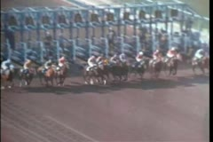 Horses coming out of starting gate at race track Stock Footage
