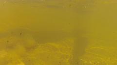 Underwater shot of walking on an ocean beach Stock Footage