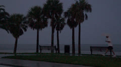 Florida Rain Storm Under Umbrella Stock Footage
