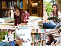 Stock Photo of Collage of students studying