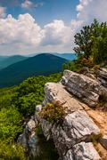 view of the appalachians from the summit of tibbet knob, on the virginia-west - stock photo