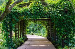 Walkway path through the garden Stock Photos