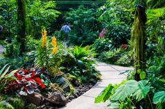 walkway path through the garden - stock photo