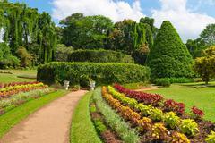 Beautiful tropical botanical garden Stock Photos