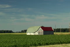 Driving by old farm buildings in a cornfield in the Midwest Stock Footage