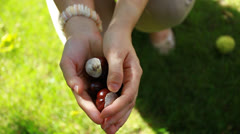 Handful of conkers with blurred green background - stock footage