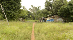 Stock Video Footage of path to a run-down house in rural thailand