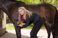 Girl brushes her pony Stock Photos