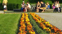 Munich Hofgarten Palace park Spring flower blossom bloom Germany Bavaria - stock footage