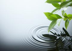 Water ripple and leaf Stock Photos