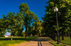 Lamp and brick path through trees on federal hill, baltimore, maryland. Stock Photos