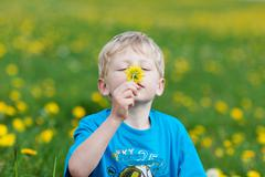 Cute little boy smelling on a flower Stock Photos