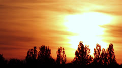 Sunset over the trees, rich colors of the sunset Stock Footage