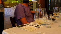 wine tasting - stock footage