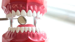 Dentist inspects teeth of toy jaw Stock Footage