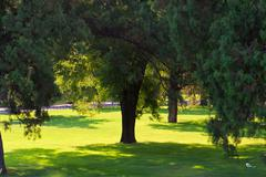 scenery of a park - stock photo