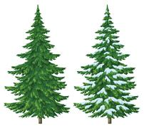 Christmas trees Stock Illustration