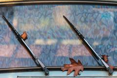 autumn leaves between the wipers of a classic car - stock photo
