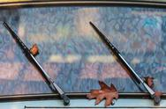 Stock Photo of autumn leaves between the wipers of a classic car