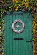 Old green barndoor surrounded by beautiful ivy during autumn Stock Photos