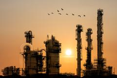 Oil refinery during sunset with birds flying by Stock Photos