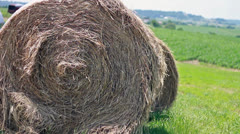 Hay bale Sitting in a Cornfield Stock Footage