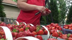 Fresh pick strawberry 4 Stock Footage