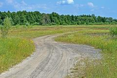 ground road in the meadow, travel, blue sky with white clouds - stock photo